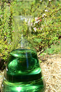 manuka in flask green.jpg