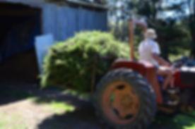 tractor load peter.jpg