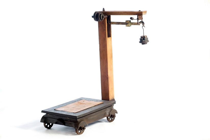 Barn Scale משקל אסם