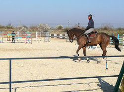 Outdoor horse training lesson