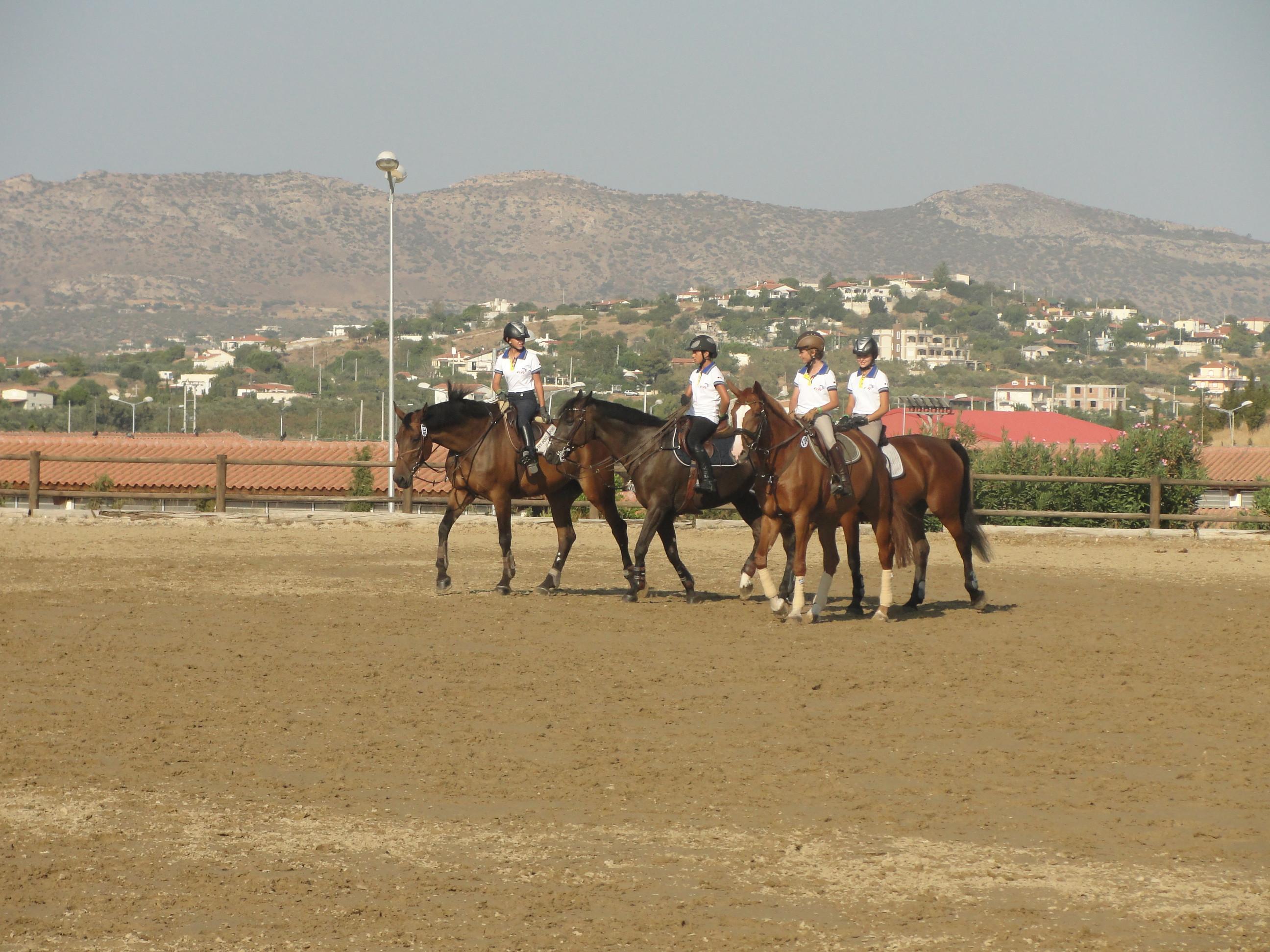 Horse Boarding