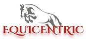 LOGO EQUICENTRIC.png