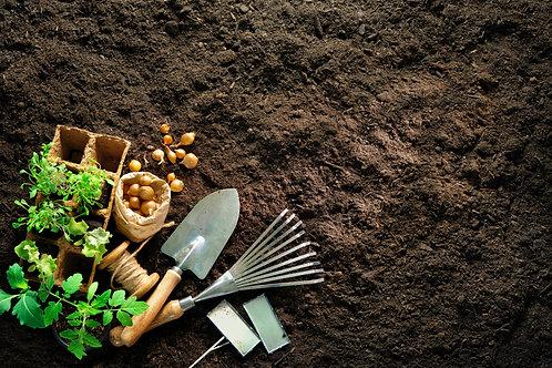 Garden Wellness Kit