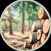 wood-waste-circle.png
