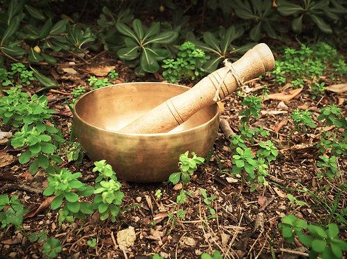 Garden Alchemy Wellness Kit
