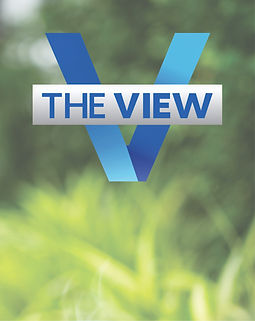 the view press image.jpg