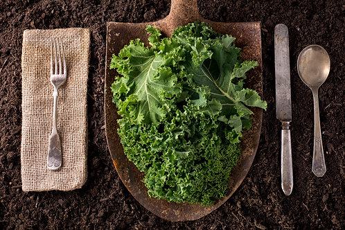 Garden-to-Table Wellness Kit