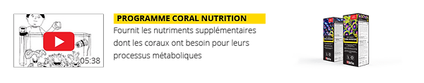 video-3-RCP-Page-nutrition-FR1..png