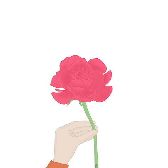 Hand holding a pink peony illustration by Miss Neira Designs childrens and fashion illustrator