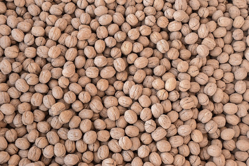 Baby Walnuts Inshell - 20 pounds