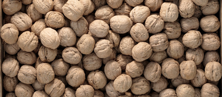 How to Care & Store Walnuts