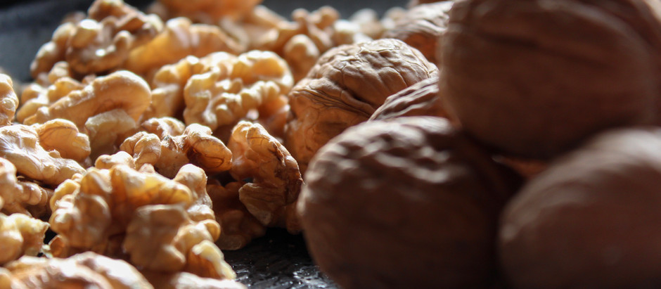 Exploring Walnuts & Mental Health