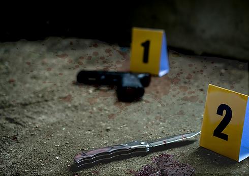 1-advanced-crime-scene-docu_10.png