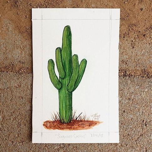Saguaro Cactus 7/14/18