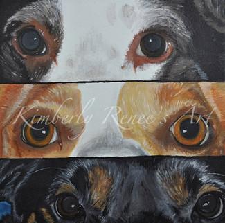 Dog Eyes