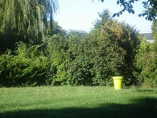 grand jardin, séjour au vert