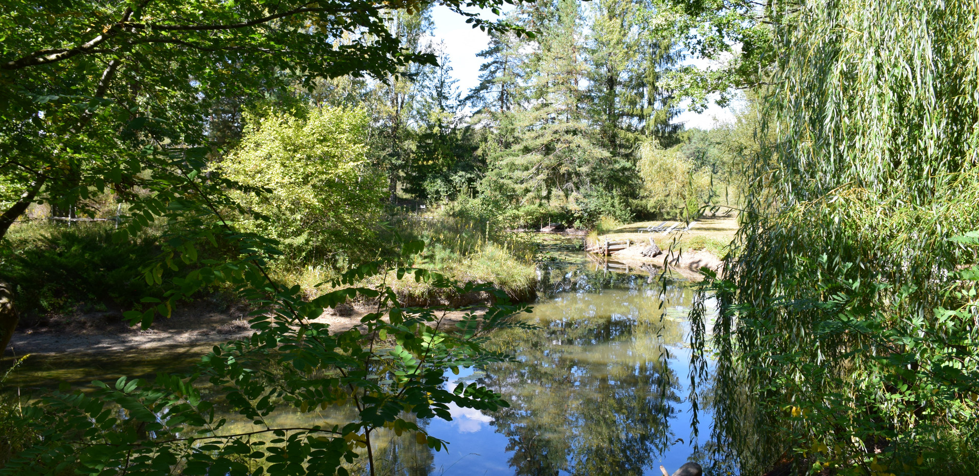 parc et étang