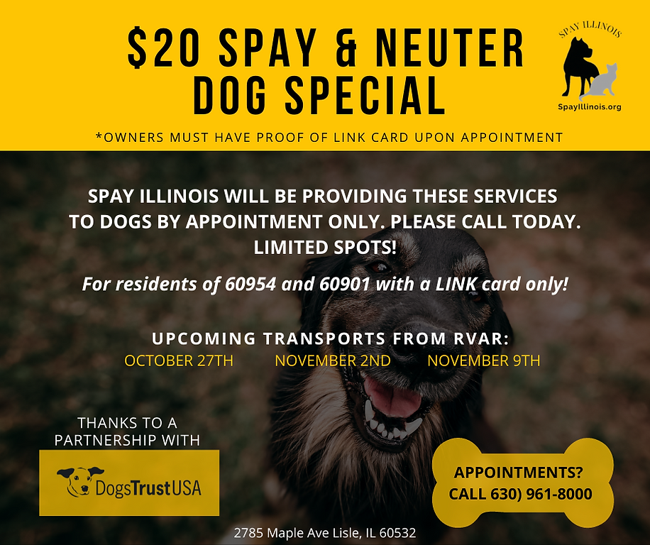 $20 Spay neuter special (Facebook Post)-4.png