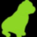 pitbull-green-01.png