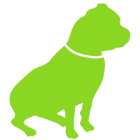 pitbull-green-01.png