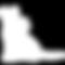 MICRICHIP CAT-LEFT FACE-01.png