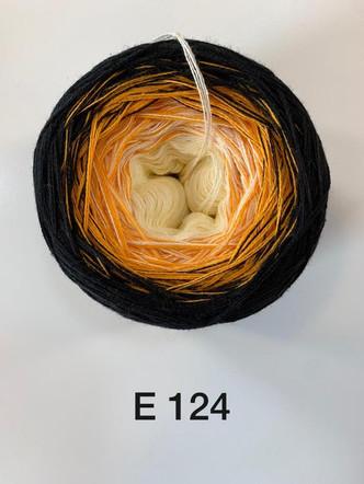 E124.jpeg