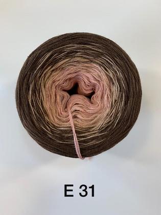 E31.jpeg