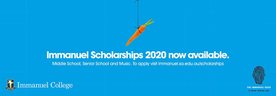 immanuel college nespaer advert for scholarship applications