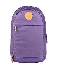 Urban 30L Dusty Purple.jpg