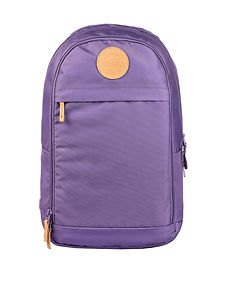 Urban 30L Dusty Purple.jpg