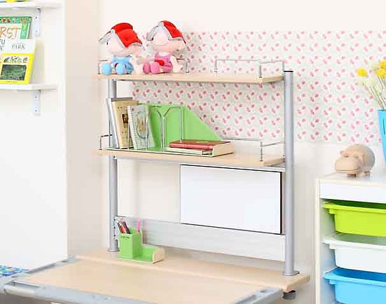 Smart Book Shelf - Double.jpg