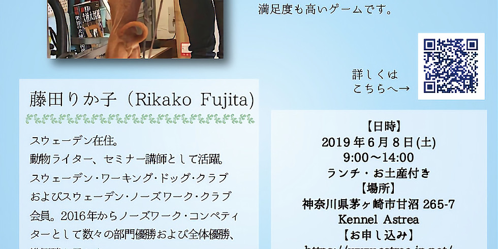 Rikako's Nosework Seminer 7th ×Kiwi Kichens