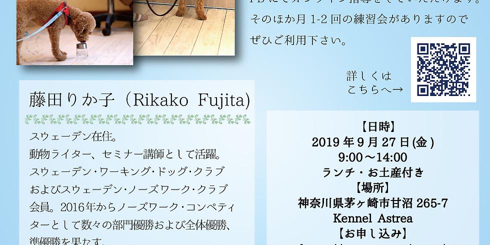 Rikako's Nosework Seminer 8th