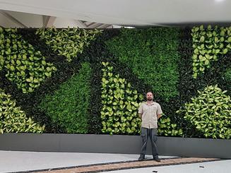 completed-vertical-garden-wall.jpg