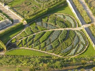 leaf pattern foodscaping 3.jpg