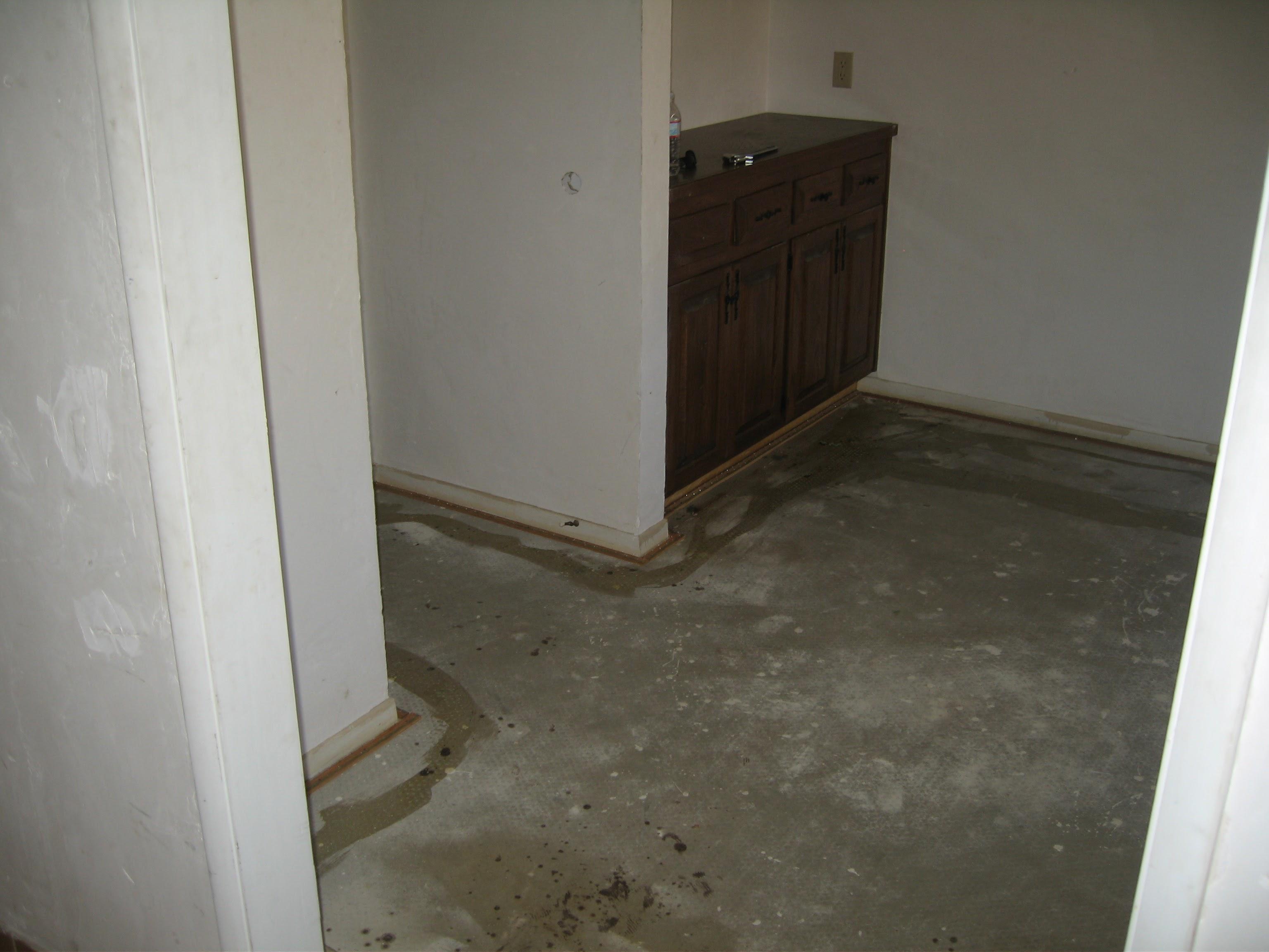 house 2008 033