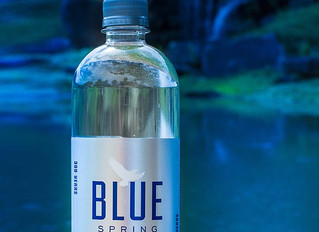 Find Blue Spring Living Water in Mobile or Baldwin County, In Alabama