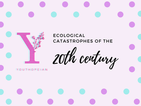 Ecological Catastrophes of the 20th Century