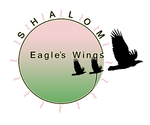 Shalom Eagle's Wings logo.png