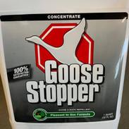 goose stopper.jpg