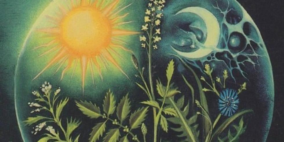 Astro Herbalism