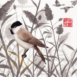 taoist - the marsh tit & the goose - 2015-03-09 at 14-16-40.jpg