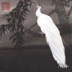 taoist - the white peacock - 2015-08-22 at 13-52-01.jpg