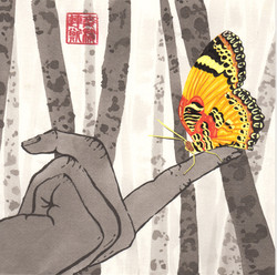 taoist - the boy and the butterfly - 2015-07-06 at 11-43-13.jpg