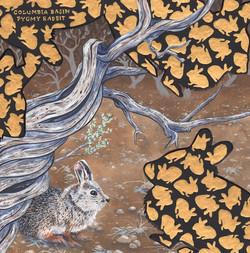extinct - columbia basin pygmy rabbit - 2015-01-02 at 16-09-19.jpg