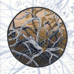 joshua tree - creosote bush branches   - 2014-02-10 at 13-55-26.jpg