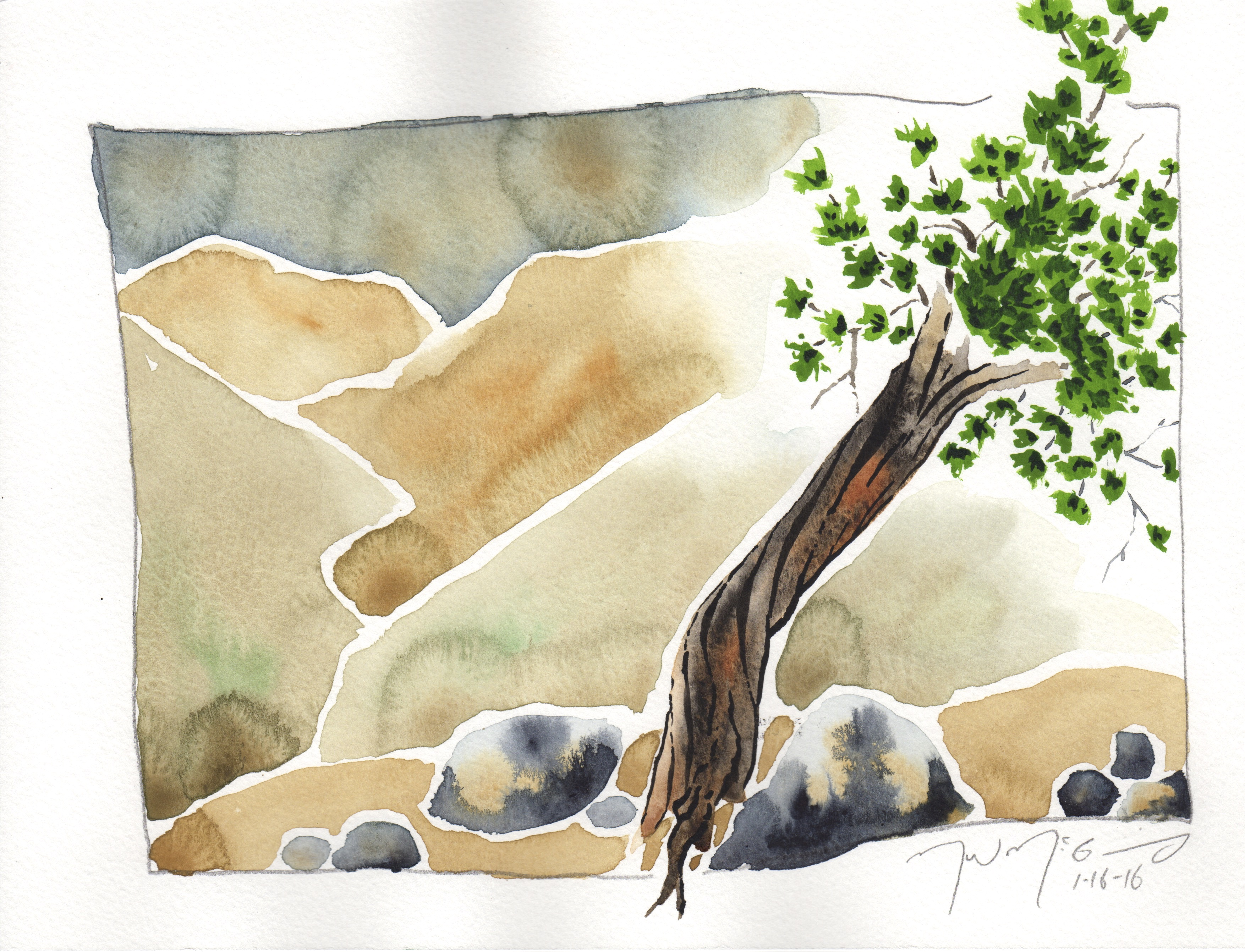 joshua tree 2016 - 6.jpg