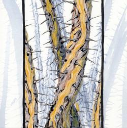 joshua tree - octotillo poles  - 2014-02-10 at 13-49-11.jpg