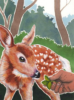 BAWS2 - the deer and the hermit - 2014-06-27 at 13-39-38.jpg