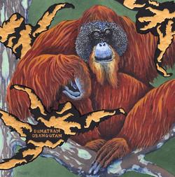 extinct - sumatran organutan - 2015-06-10 at 09-45-35.jpg
